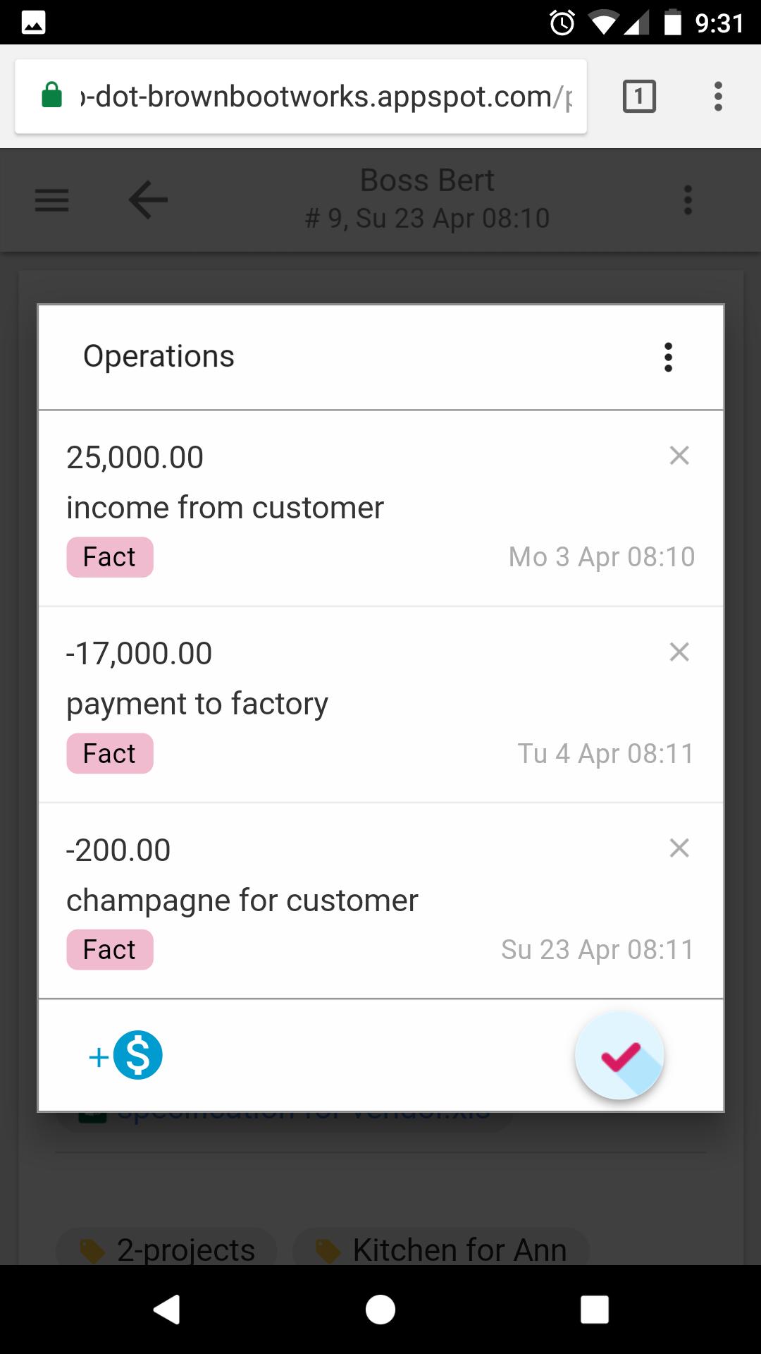 Операции, введённые Руководителем — клиентские проекты