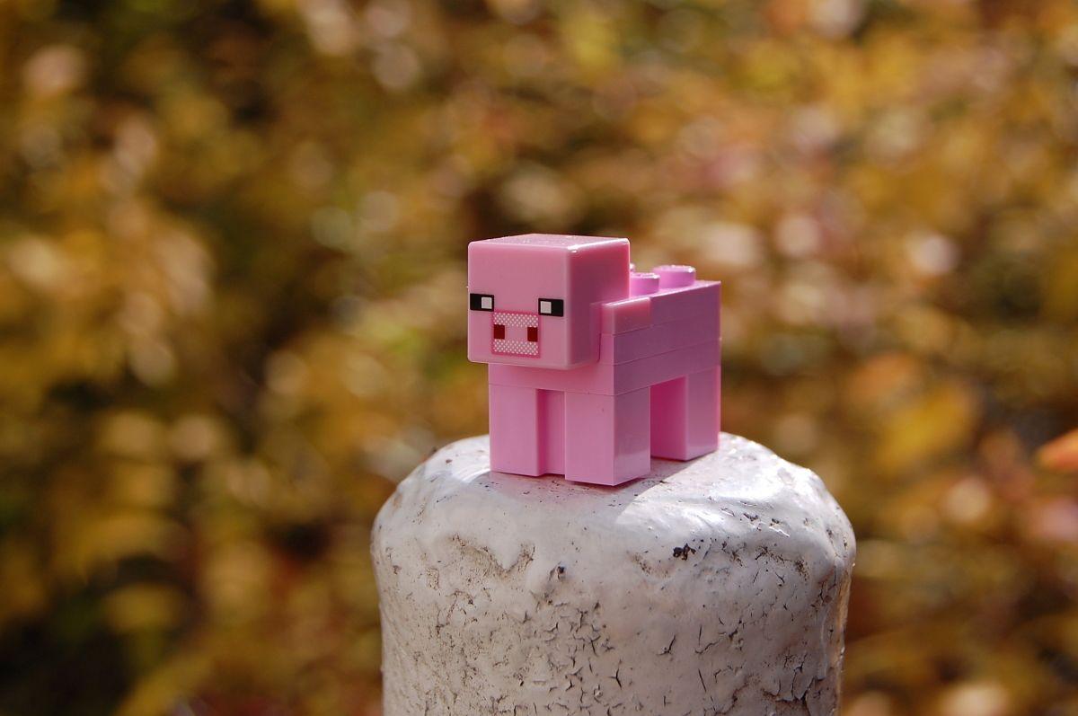 Как создать свой сервер Minecraft
