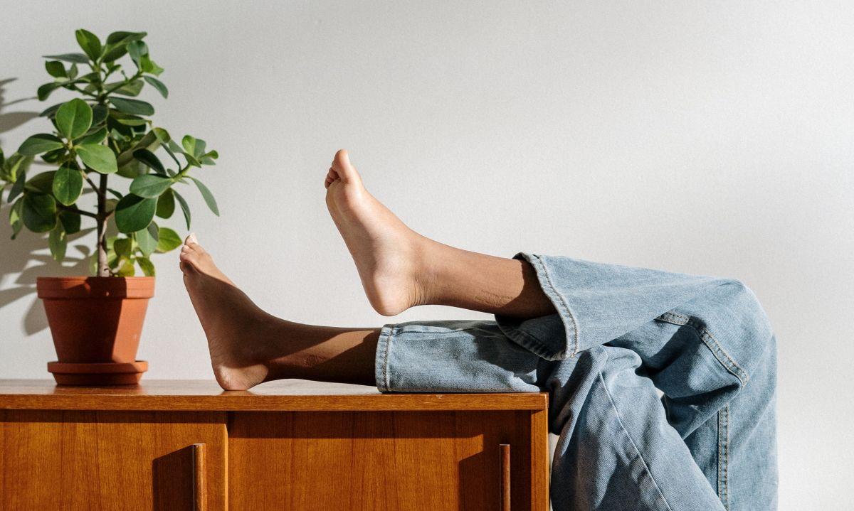 Как не забыть полить растения вовремя