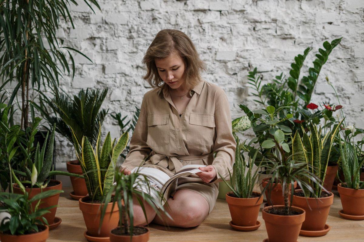 Как правильно поливать растения, если ты нуб